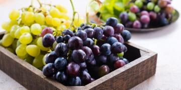 Hroznová semínka – přehlížený zdroj antioxidantů