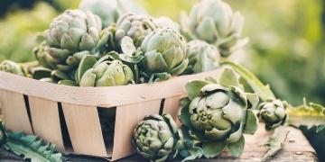 Artyčok – neznámá zelenina i elixír zdraví