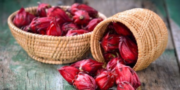 Ibišek – nádherné květy i zajímavé účinky na naše zdraví