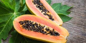 Papája – populární exotické ovoce plné cenných enzymů
