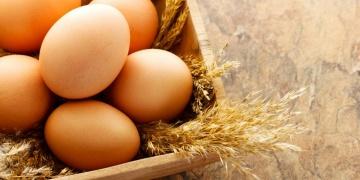 Vitamin B12 – kobalamin