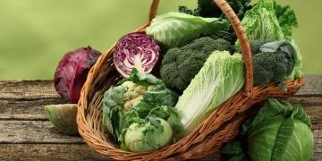 Vitamin B9 – folát, kyselina listová